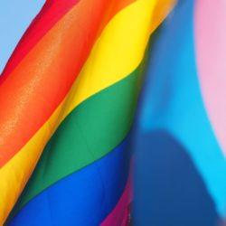 LGBT flag rainbow